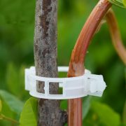 Trellis Clips for Flower Vine Vegetables Tomato