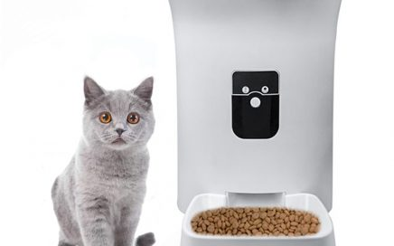 automatic pet feeder for cat
